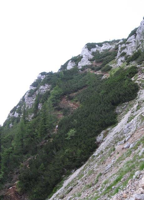 Del nove poti na Durce. Pogled od vstopa v ZZ.