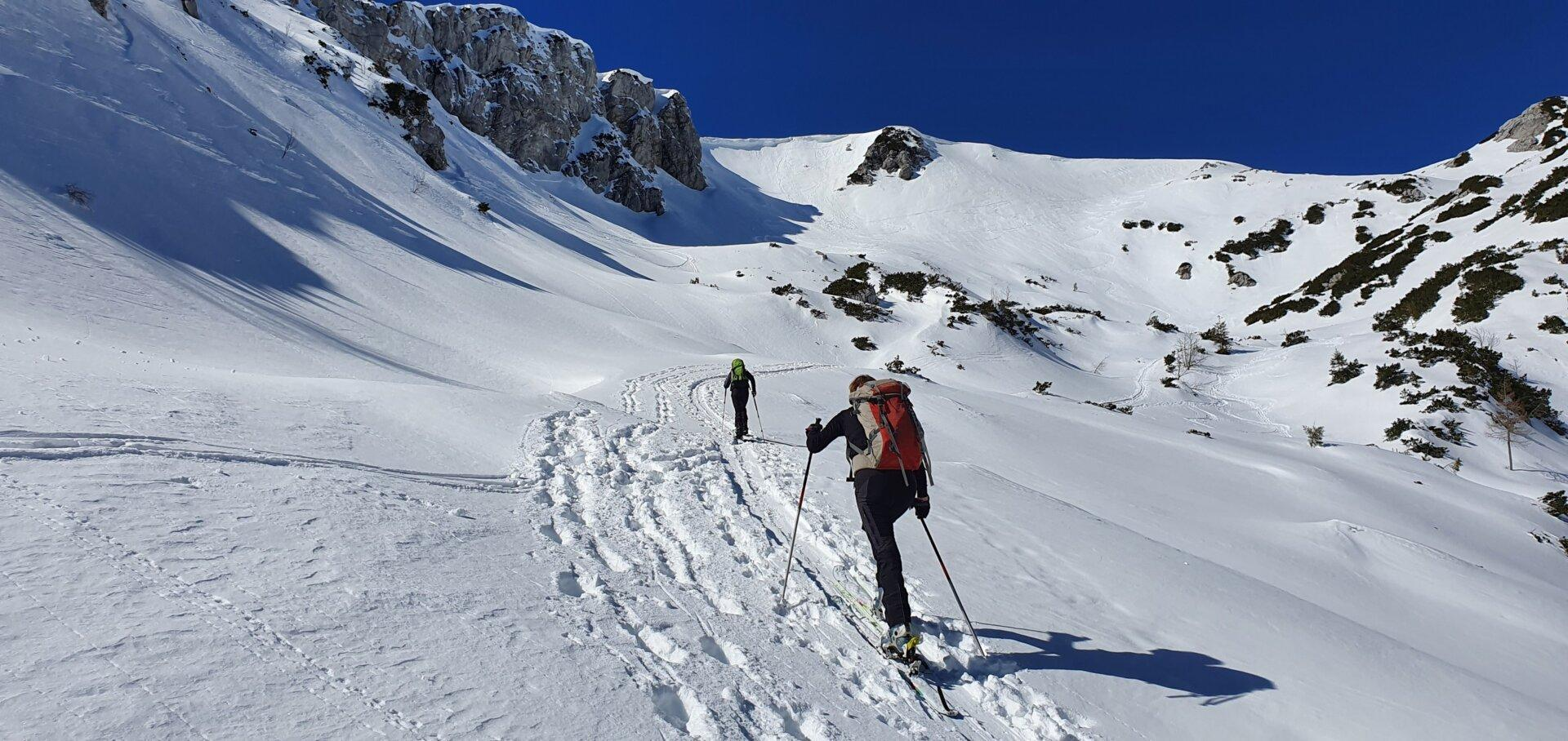 Tolsti vrh na Dleskovški planoti